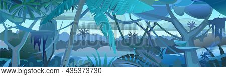 Jungle Tree. Dense Thickets. View From Tropical Forest Panorama. Southern Dark Rural Night Scenery.