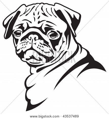 Dog Pug illustration