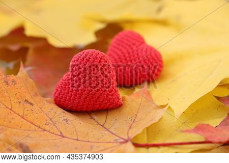 Red Knitted Hearts On Yellow Maple Leaves. Concept Of Romantic Love In Autumn, Fall Season