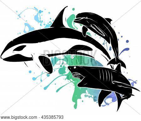 Vector Silhouette Shark Killer Whale And Dolphin