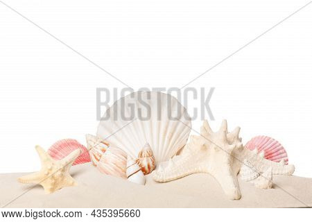 Beautiful Starfishes And Sea Shells In Sand On White Background