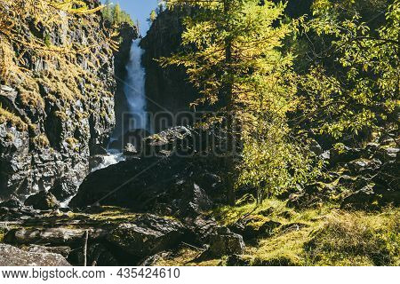 Mountain Autumn Landscape With Vertical Big Waterfall And Yellow Larch Trees. Large Waterfall In Nar
