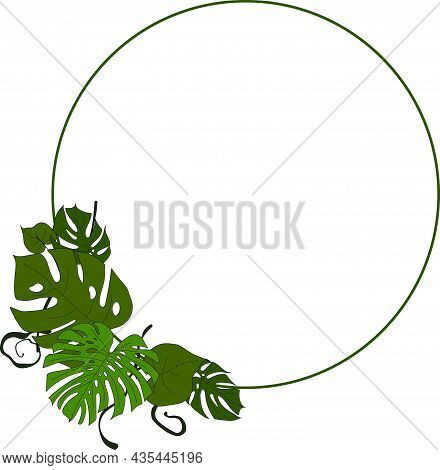 Monstera Leaves Frame For Your Design, Copyspace, Template