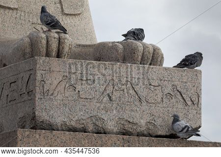 Pigeons On The Ancient Egyptian Statue Of A Sphinx On The Embankment Neva River, St. Petersburg, Rus