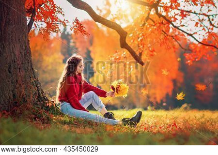 A Young Woman In A Red Sweater Sits Under An Oak Tree In An Autumn Forest On A Sunny Day, A Bouquet