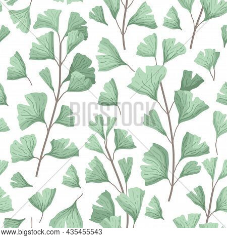 Vector Illustration Ginkgo Biloba Leaves. Seamless Pattern With Leaves. Herbal Alternative Medical C