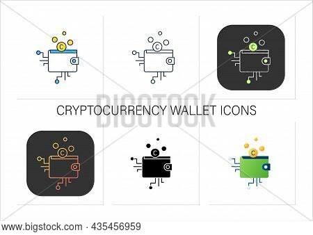 Cryptocurrency Wallet Icons Set.physical Medium, Program.private Access For Cryptocurrency Transacti