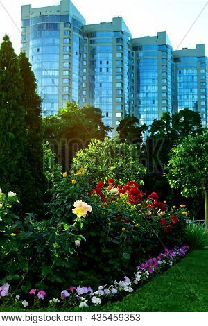 A Picturesque Urban Landscape With Large Red And Yellow Roses, Blue And Purple Petunias, Cypresses,