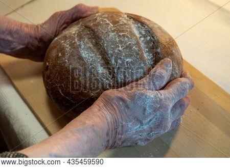 Black Fresh Round Rye Bread In The Hands Of An Elderly Woman  On A Kitchen Board. Bread In Flour. Fu