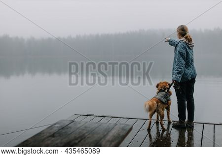 Pretty Caucasian Girl With Brown Nova Scotia Duck Tolling Retriever Staying On Wooden Pier And Showi