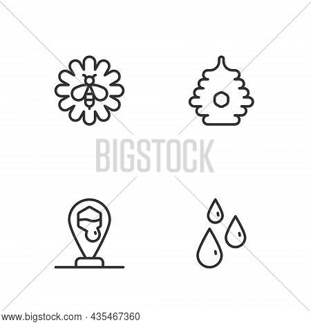 Set Line Drops Of Honey, Honeycomb Bee Location, Bee Flower And Hive For Bees Icon. Vector