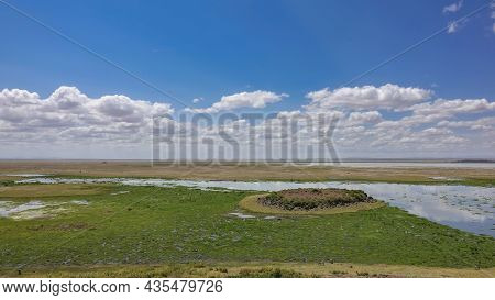 The African Savanna Stretches To The Horizon. The Swamp Is Covered With Green Vegetation. Picturesqu