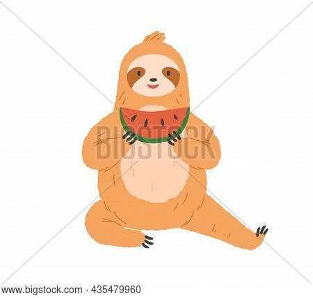 Cute Sloth Eating Watermelon. Happy Funny Animal Sitting And Holding Sweet Fruit Slice In Paws. Char