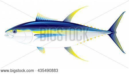 Yellowfin Tuna Fish In Side View Illustration