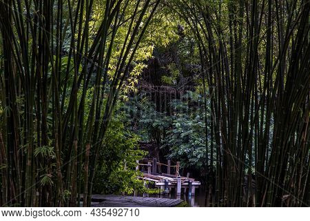 A Wooden Bridge Over A Small River Or Pond On The Background Of Green Trees. No Focus, Specifically.