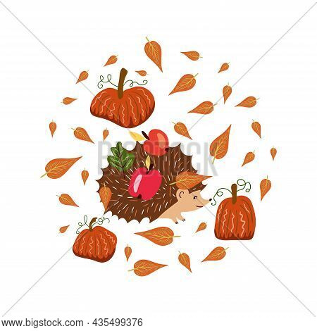 Autumn Elements In Warm Colors With Pumpkins And A Hedgehog Carrying Fruits. Vector Design For Autum