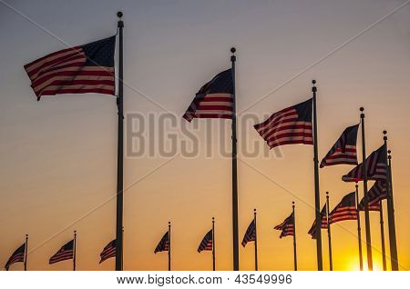 Flags Of The Washington Monument