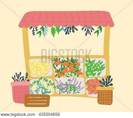 Fresh Fruits And Tea Herbs Are Sold At A Stall At The Local Food Market. Fruit Berry Additives For T