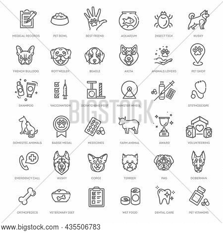 Big Vector Set, Outline Web Icon Set - Pet, Vet, Pet Shop, Types Of Pets