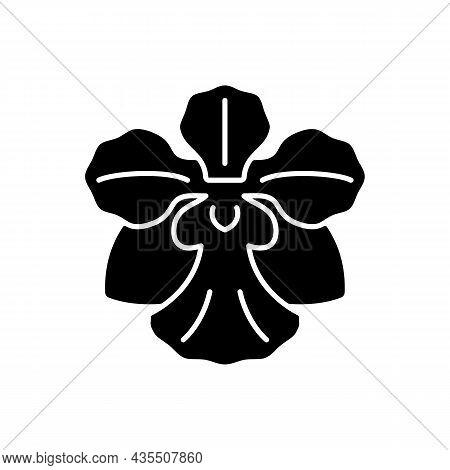 Vanda Miss Joaquim Black Glyph Icon. Singaporean National Flower. Plant Hybrid. Singapore Orchid. Fa