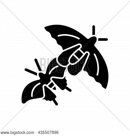 Butterflies Of Singapore Black Glyph Icon. National Insects. Asian Butterfly Species. Singaporean Na