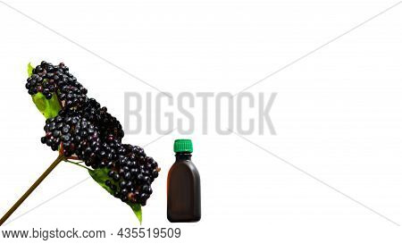 Medicinal Black Berry Isolated On White Background. Elderberry With A Jar For Medicine. Homeopathy.