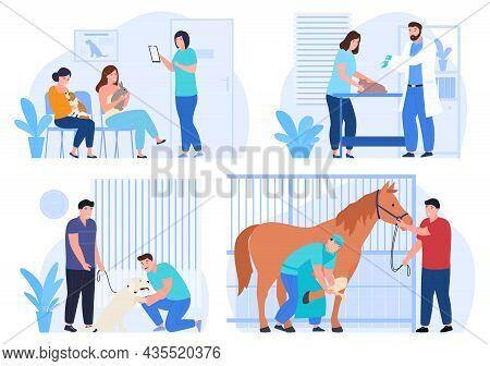 Veterinarians Examining And Treating Animals Set Vector Flat Illustration. Pet Treatment And Examine
