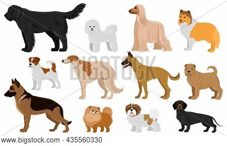 Cartoon Puppy Dogs Breeds Pets Cute Characters. Dachshund, Shepherd, Malinois And Jack Russell Terri