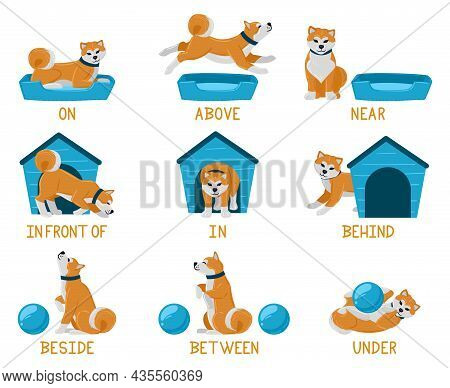 Learning English Prepositions With Cute Cartoon Puppy Dog. Cute Akita Dog Above, Behind, Under, Near