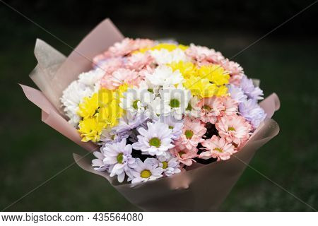 Flowers bouquet made of multicolored delicate pastel colors chrysanthemum flowers. Floral concept