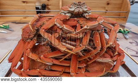 Boiled Snow Crabs Are Stacked On A Tray. Long Legs, Claws, And A Bright Red Shell Are Visible. Close