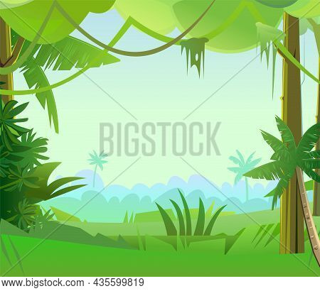 Jungle Creepers. Dense Thickets. View From The Forest. Southern Rural Scenery. Tropical Forest Panor