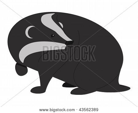 Badger Two