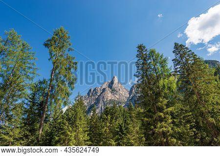 Mountain Peak Of The Dolomites (mountain Range Sasso Del Signore) And Pine Woodland. Pragser Wildsee