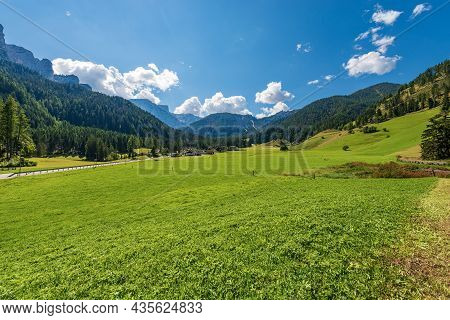 Green Meadows And Pine Woodland In Braies Or Prags Valley (val Di Braies), Prags Municipality, Fanes