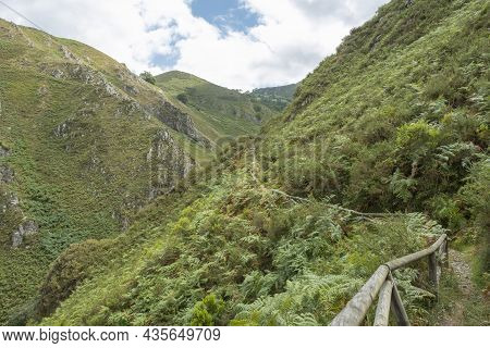 A Path Or Footpath Runs Along A Mountainside Covered With Ferns And Vegetation; A Wooden Railing In