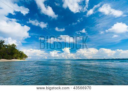 Neil Island Ocean Seascape Forest Beach Edge Wave