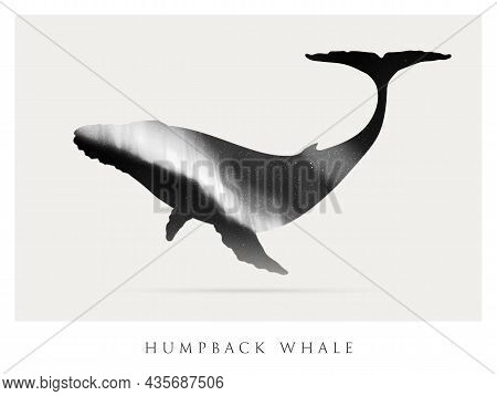 Whale Silhouette. Abstract Animal Shape. Night Starry Sky
