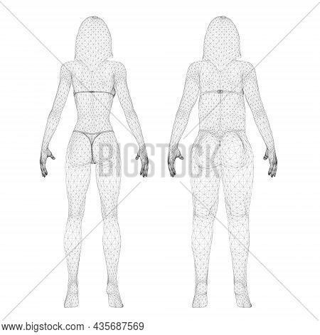 Two Models Of A Wireframe Girl In Underwear, A Slim And Fat Girl. The Process Of Obesity Of The Girl