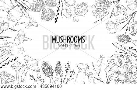 Mushroom Frame. Hand Drawn Engraving Borders Of Vegetable Fungus. Natural Champignon And Shiitake. G