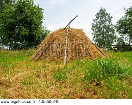 Close-up Of A Golden Stack Of Mown Dry Grass. Village, Landscape, Rural Life, Animal Feed