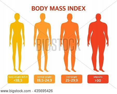 Different Types Of Shapes. Body Mass Index. The Concept Of Body Positivity And Diet. Vector Illustra