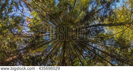 360 Degree Hyperbolic Little Planet Panorama Projection Of Full Spherical Panorama In Sunny Autumn D