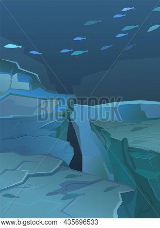 Fish School At The Bottom Of The Ocean. Underwater Wild Life. Deep Sea Landscape. Rocky Cliffs. Natu