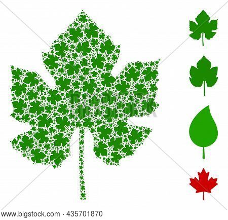 Vector Grape Leaf Collage Is Made Of Repeating Recursive Grape Leaf Parts. Recursive Composition Of