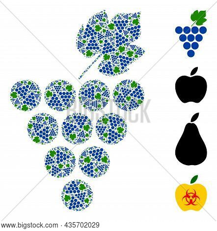 Vector Grapes Bunch Mosaic Is Formed Of Scattered Itself Grapes Bunch Elements. Recursive Mosaic Of