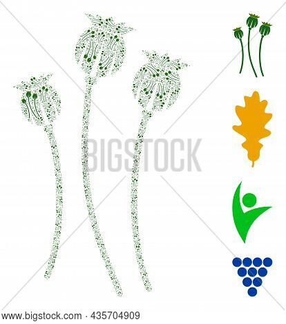 Vector Poppy Plants Composition Is Done From Scattered Fractal Poppy Plants Elements. Fractal Mosaic