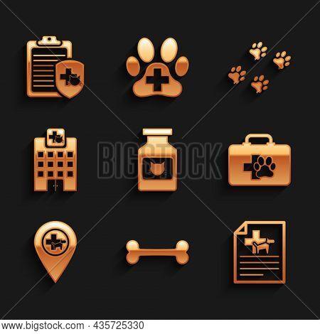 Set Cat Medicine Bottle, Dog Bone, Medical Certificate For Dog Or Cat, Pet First Aid Kit, Location V