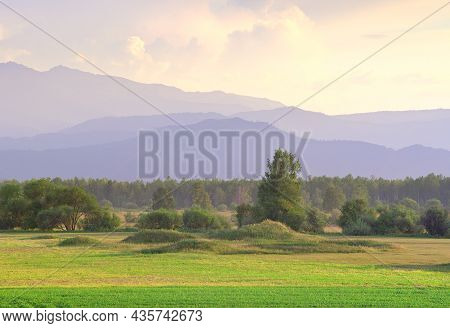Trees On A Rural Field Against The Background Of The Altai Mountains Under A Yellow Sky. Siberia, Ru