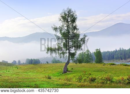 A Foggy Morning Among The Mountains Under A Blue Cloudy Sky. Siberia, Russia